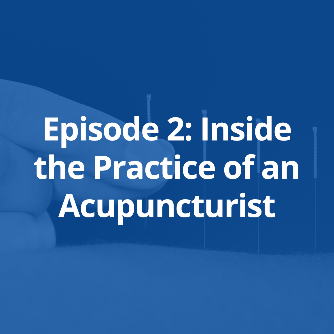 practice-of-an-acupuncturist